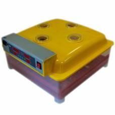 Инкубатор автоматический WQ-36